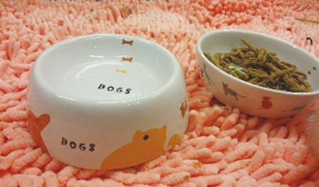 飲み水の器として用意した陶器